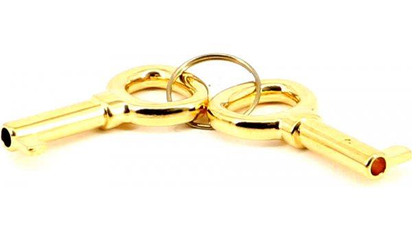 Сменная деталь - стандартный ключ Adorini - золото